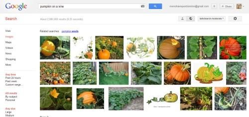 October Crafts Pumpkin Patch Thumnkin Patch