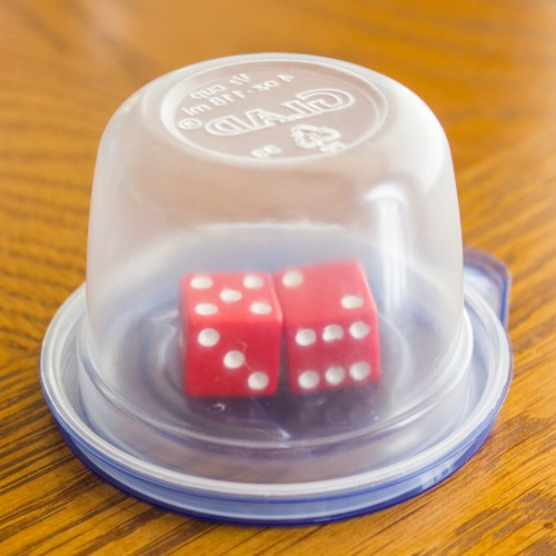 Dice in a Container -- Moms Have Questions Too