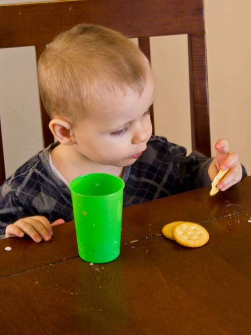 Toddler Discipline Tips -- Moms Have Questions Too
