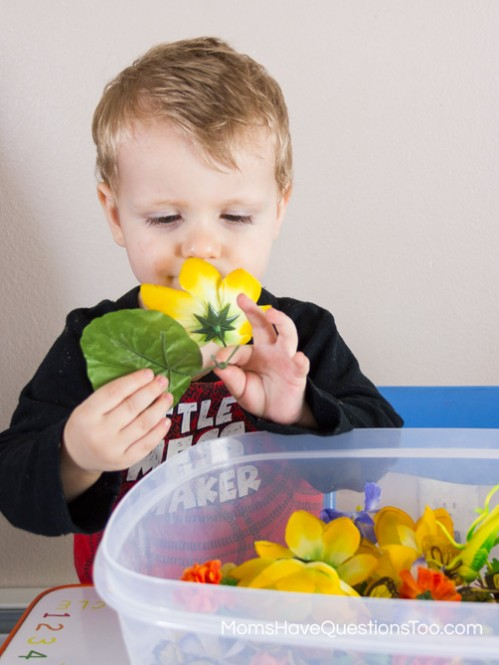 Smelling a flower from the spring sensory bin - Moms Have Questions Too