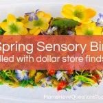 Spring Sensory Bin: Bugs and Flowers and Frogs, Oh My!