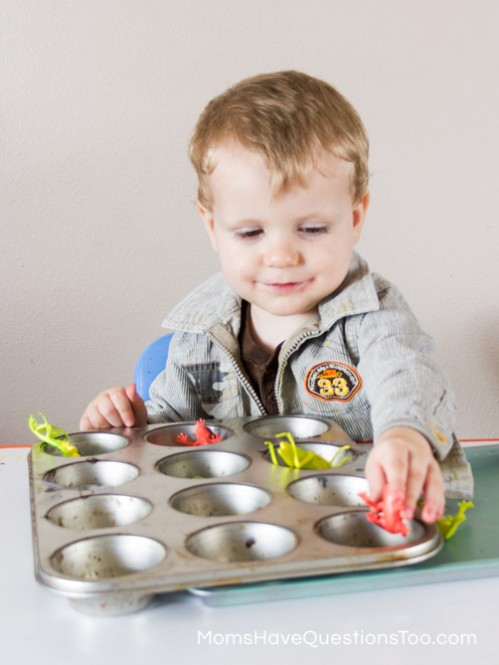 Bugs in Cupcake Tin - Spring Tot School Trays - Moms Have Questions Too