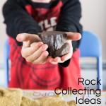 Rock Collection: Fun Summer Activity