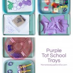 Purple Tot Trays