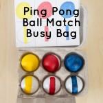 Ping Pong Ball Match Busy Bag