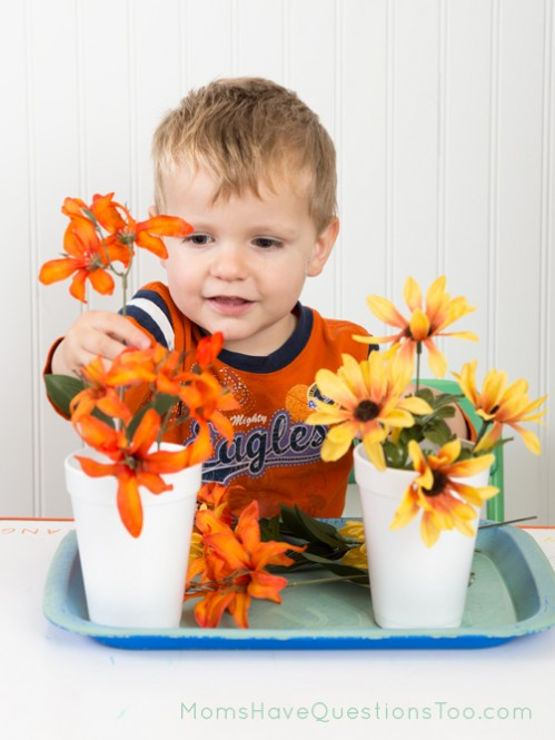 Sorting flowers by color - Moms Have Questions Too