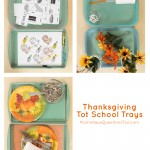 Thanksgiving Tot Trays