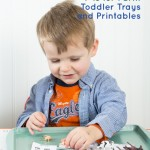 Toddler and Preschool Learning Theme: F is for Farm